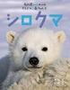 教科書にのってるどうぶつの赤ちゃん(5) シロクマ