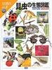 昆虫の生態図鑑