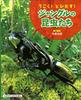 うごく!とびだす!ジャングルの昆虫たち