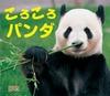ころころパンダ