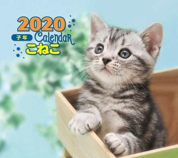2020年 ミニ判カレンダー こねこ