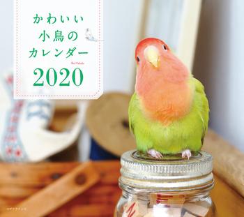 2020年 ミニ判カレンダー かわいい小鳥のカレンダー