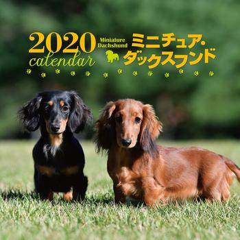 2020年 大判カレンダー ミニチュア・ダックスフンド