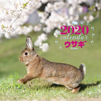 2020年 大判カレンダー ウサギ