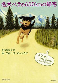 名犬ベラの650kmの帰宅