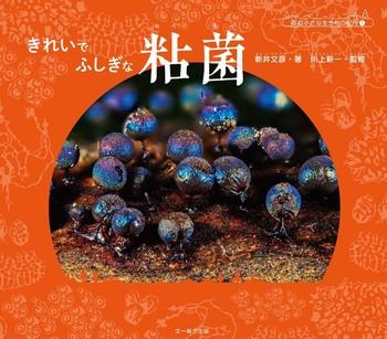 きれいで ふしぎな 粘菌