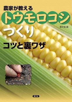 農家が教える トウモロコシつくり コツと裏ワザ