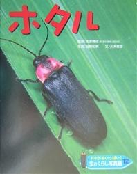 ドキドキいっぱい!虫のくらし写真館 ホタル