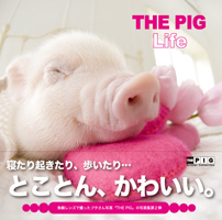 THE PIG Life