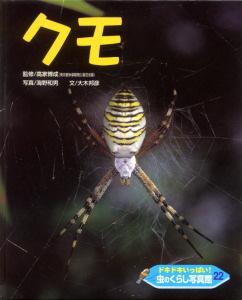 ドキドキいっぱい!虫のくらし写真館(22) クモ