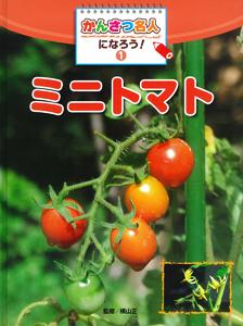 かんさつ名人になろう!(1) ミニトマト