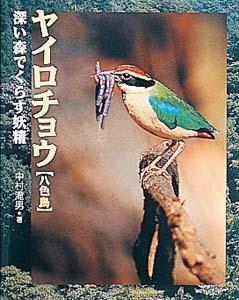 地球ふしぎはっけん(3) ヤイロチョウ 深い森でくらす妖精