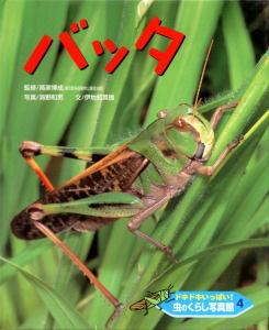 ドキドキいっぱい!虫のくらし写真館(4) バッタ