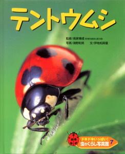 ドキドキいっぱい!虫のくらし写真館(7) テントウムシ