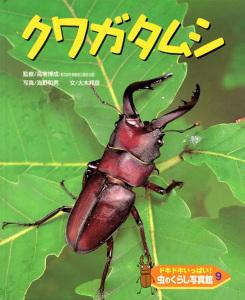 ドキドキいっぱい!虫のくらし写真館(9) クワガタムシ