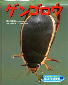 ドキドキいっぱい!虫のくらし写真館(18) ゲンゴロウ
