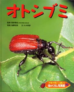 ドキドキいっぱい!虫のくらし写真館(19) オトシブミ