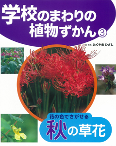 学校のまわりの植物ずかん(3) 花の色でさがせる秋の草花