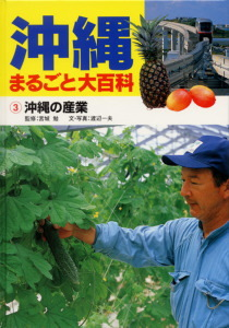 沖縄まるごと大百科(3) 沖縄の産業
