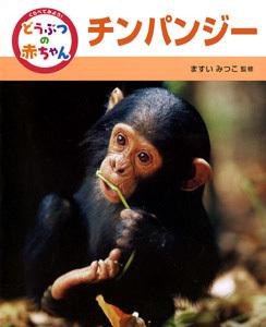 くらべてみよう!どうぶつの赤ちゃん チンパンジー