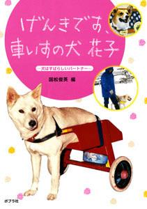 げんきです、車いすの犬 花子