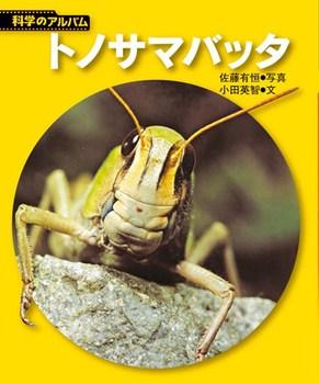 【新装版】科学のアルバム トノサマバッタ