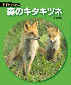 【新装版】科学のアルバム 森のキタキツネ