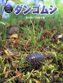科学のアルバム・かがやくいのち ダンゴムシ 落ち葉の下の生き物