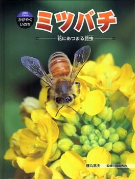 科学のアルバム・かがやくいのち ミツバチ 花にあつまる昆虫