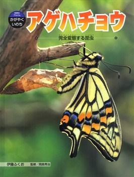 科学のアルバム・かがやくいのち アゲハチョウ 完全変態する昆虫