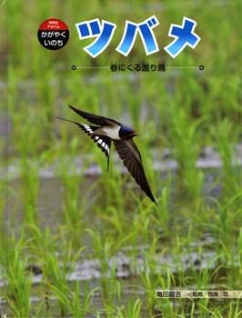 科学のアルバム・かがやくいのち ツバメ 春にくる渡り鳥