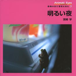 アニマルアイズ・動物の目で環境を見る(3) 明るい夜