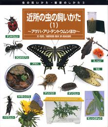 虫の飼いかた・観察のしかた(3) 近所の虫の飼いかた(1)−アゲハ・アリ・テントウムシほか