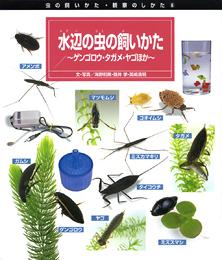 虫の飼いかた・観察のしかた(6) 水辺の虫の飼いかた−ゲンゴロウ・タガメ・ヤゴほか