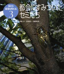 虫から環境を考える(3) 都会にすみついたセミたち