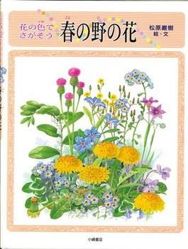 花の色でさがそう 春の野の花