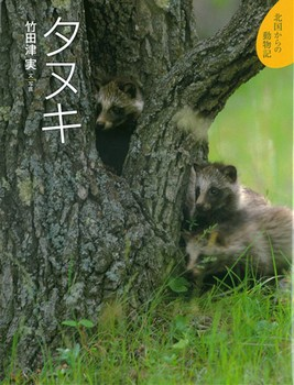 北国からの動物記(7) タヌキ