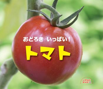 しぜんにタッチ! おどろきいっぱい!トマト