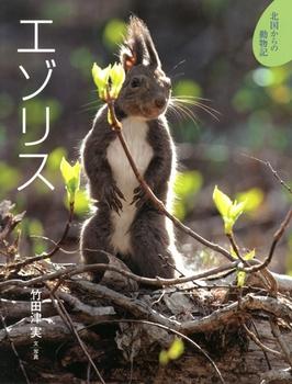 北国からの動物記(8) エゾリス