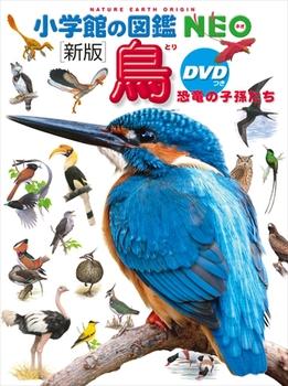 新版 小学館の図鑑NEO 鳥 恐竜の子孫たち DVDつき