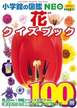 花クイズブック