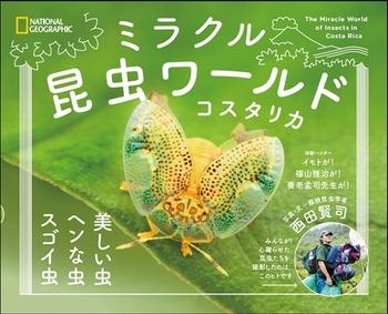 ミラクル昆虫ワールド コスタリカ