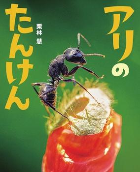アリのたんけん