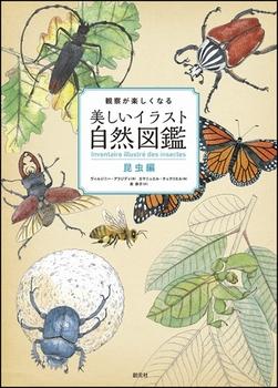 観察が楽しくなる 美しいイラスト自然図鑑 昆虫編