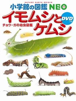 小学館の図鑑 NEO イモムシとケムシ DVDつき チョウ・ガの幼虫図鑑