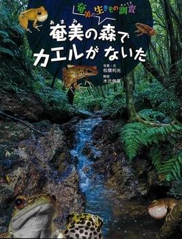 奄美の生きもの調査 奄美の森でカエルがないた
