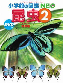 新版 小学館の図鑑NEO 昆虫2 DVDつき 地球編
