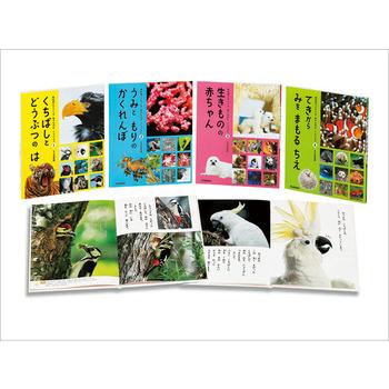 教科書にでてくる 生きものをくらべよう 全4巻