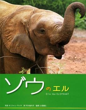 ゾウのエル
