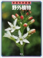 学習科学図鑑 野外植物